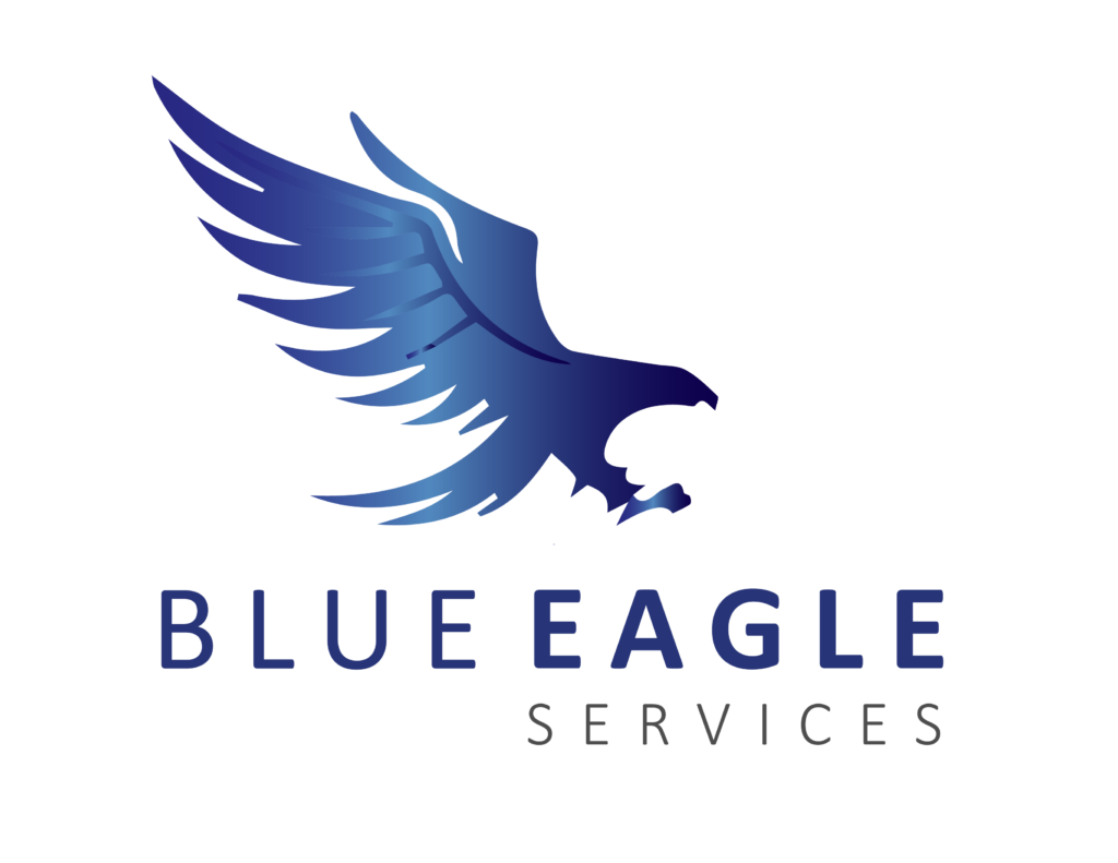 blue eagle handyman services
